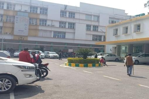 कानपुर नगर निगम ने बेच डाले 16 लाख के सूअर