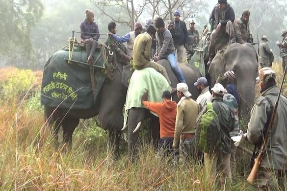 हरिद्वार: शहर में न घुसें गजराज, इसके लिए बिगड़ैल हाथियों को रेडियो कॉलर लगाएगा वन विभाग