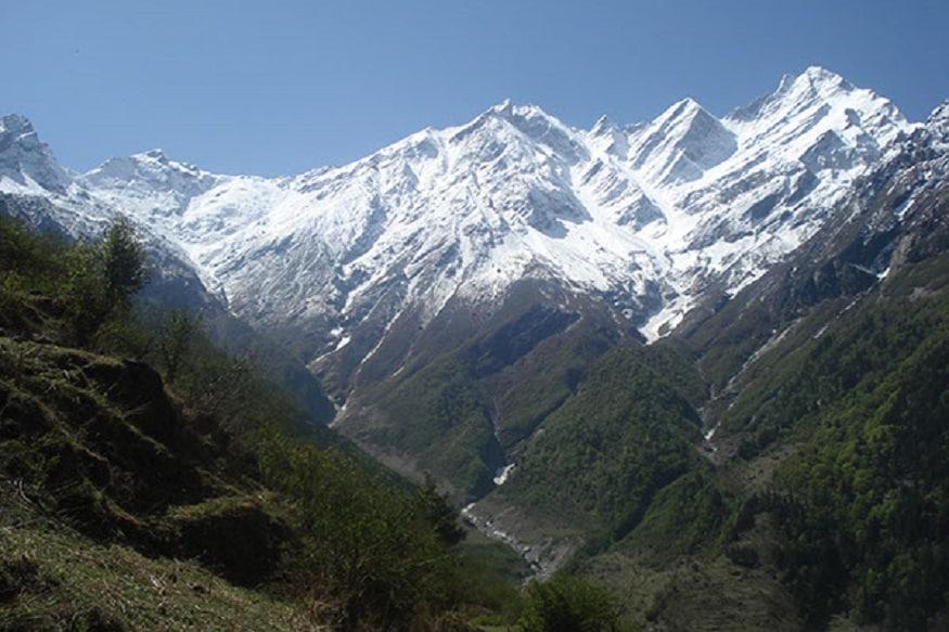 medicinal plants hrdi 4, इस बात के वैज्ञानिक प्रमाण हैं कि हिमालय के ऊंचाई वाले क्षेत्रों में होने वाली जड़ी-बूटियों की मेडिसिनल वैल्यू बहुत अच्छी होती है. (तस्वीर, साभार HRDI)