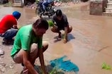 सड़क पर धान की रोपाई कर लोगों ने सरकार के खिलाफ किया विरोध-प्रदर्शन
