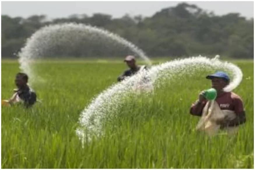 Gorakhpur fertilizer plant news, Sindri news, Barauni news, Ramagundam fertilizer plant, farmers news, urea production, urea crisis, गोरखपुर उर्वरक संयंत्र समाचार, सिंदरी समाचार, बरौनी समाचार, रामागुंडम उर्वरक संयंत्र, किसान समाचार, यूरिया उत्पादन, यूरिया संकट