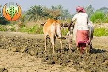 केंद्र ने किसानों को भेजा YouTube मैसेज, तो क्या फसल बीमा से बच रहे अन्नदाता?