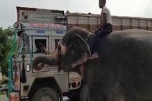 Video: लॉकडाउन में मालिक का मददगार बना हाथी, हाईवे पर इस अंदाज में कर रहा कमाई