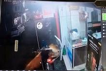 CCTV VIDEO: सुंदरनगर में सांडों की भिड़ंत, चपेट में आए बाइक सवार दो युवक