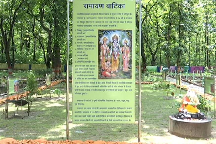 हल्द्वानी. अयोध्या में राम मंदिर का शिलान्यास 5 अगस्त को होगा लेकिन मंदिर के शिलान्यास से पहले उत्तराखंड में हल्द्वानी वन अनुसंधान केंद्र ने एक ऐसी अनोखी रामायण वाटिका तैयार कर डाली है जिसमें रामायण काल में मौजूद वनस्पतियों को लगाया गया है. ये वे पेड़-पौधे हैं जिनका ज़िक्र वाल्मिकी रामायण में मिलता है. वन अनुसंधान केंद्र की इस वाटिका में 72 प्रकार के पौधे मौजूद हैं जिनमें जड़ी-बूटियों से लेकर फलदार और हरियाली देने वाले वृक्ष तक शामिल हैं.