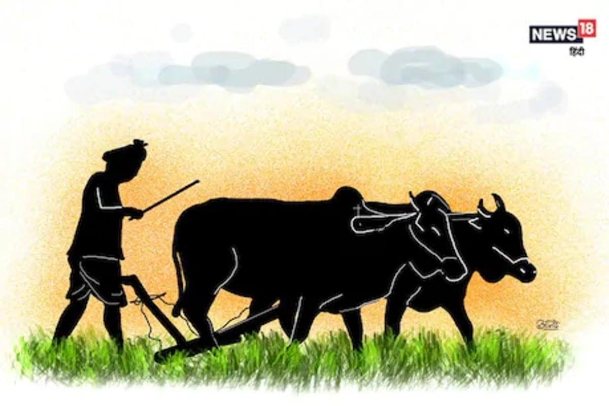 new farm laws, contract farming, Modi government, punjab govt, capt amarinder singh, Chhattisgarh News in Hindi, Rajasthan news, congress, farmers news, msp, नए कृषि कानून, मोदी सरकार, पंजाब सरकार, राजस्थान समाचार, कांग्रेस शासित राज्य, क्यों हो रहा कृषि कानूनों का विरोध, किसान समाचार, न्यूनतम समर्थन मूल्य