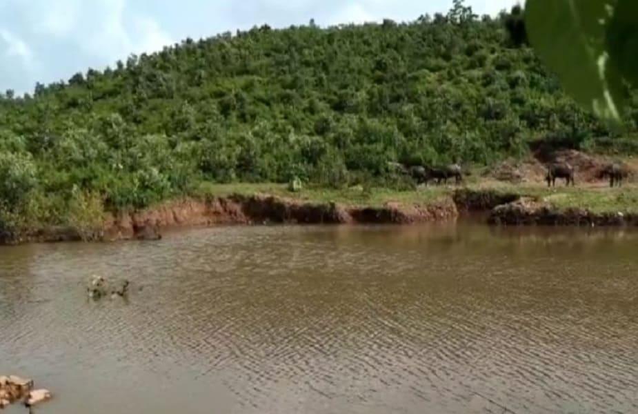 गांव की इन महिलाओं ने जब अपने इरादे बताए तो प्रशासन के कहने पर वन विभाग के साथ सामंजस्य स्थापित किया. फिर 107 मीटर के पहाड़ को काटा गया और अब इस 40 एकड़ के तालाब में लगभग 70 एकड़ में पानी भर रहा है. सूखे हुए कुएं में पानी आ चुका है. जो हैडपंप सूख गए थे अब वह पानी देने लगे हैं.