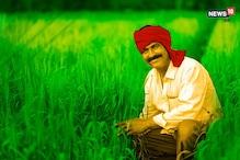 किसानों के लिये बड़ी खुशखबरी, नेफेड MSP पर मूंगफली खरीदने के लिये हुआ तैयार