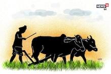 बदल रहा है मौसम, अपनी सेहत और बेहतर उपज के लिए इन बातों का ध्यान रखें किसान