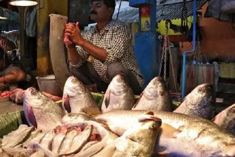 बुजुर्ग महिला की खुली किस्मत, 53 किलो मछली ने बना दिया लखपति