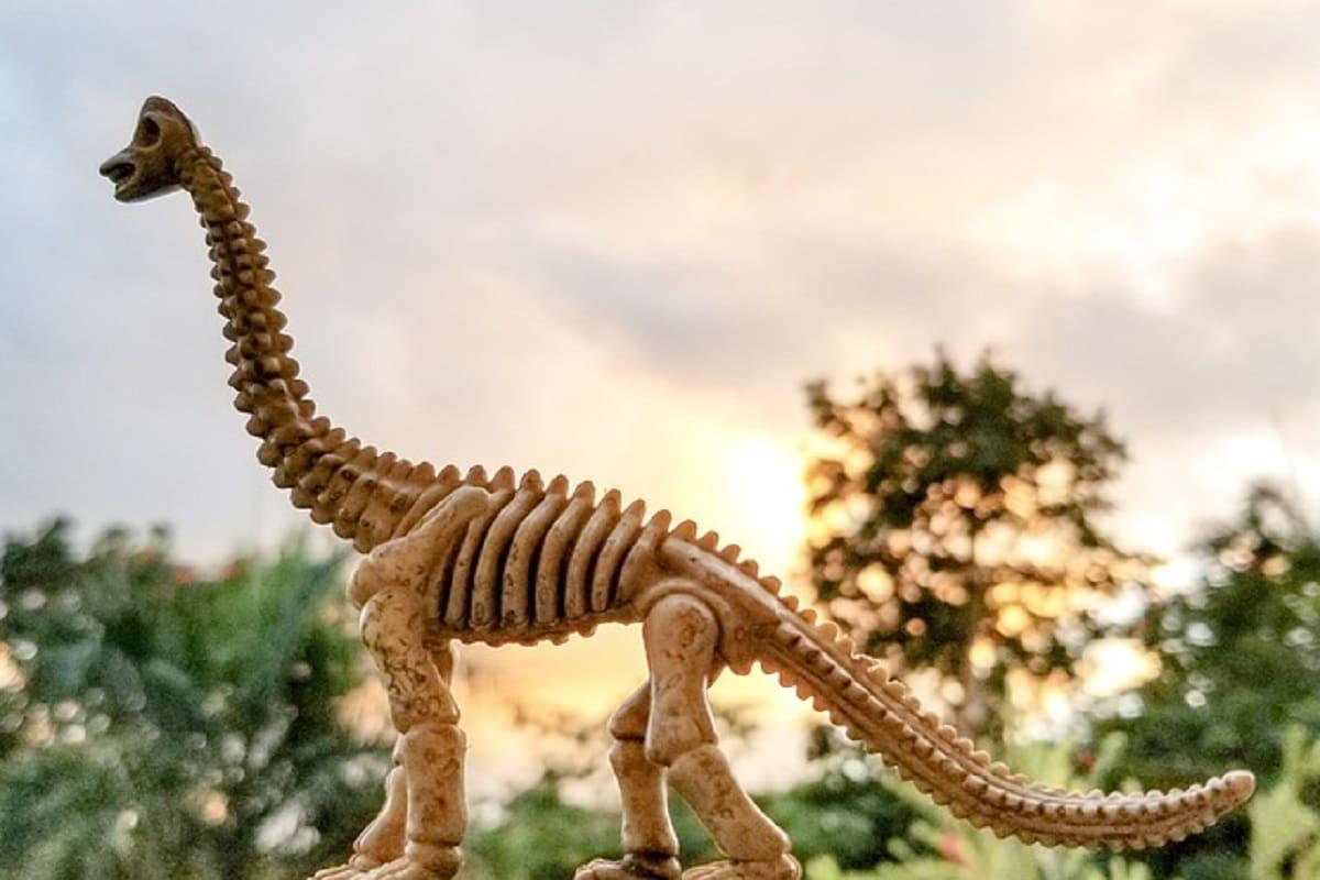 , dinosaur, duckbill dinosaur, Africa, fossil, Ocean, Palaeontology, Swimming,