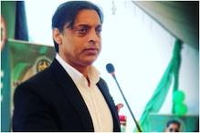 पाकिस्तान की करारी हार पर भड़के शोएब अख्तर, कहा-क्लब टीमें इससे बेहतर खेलती