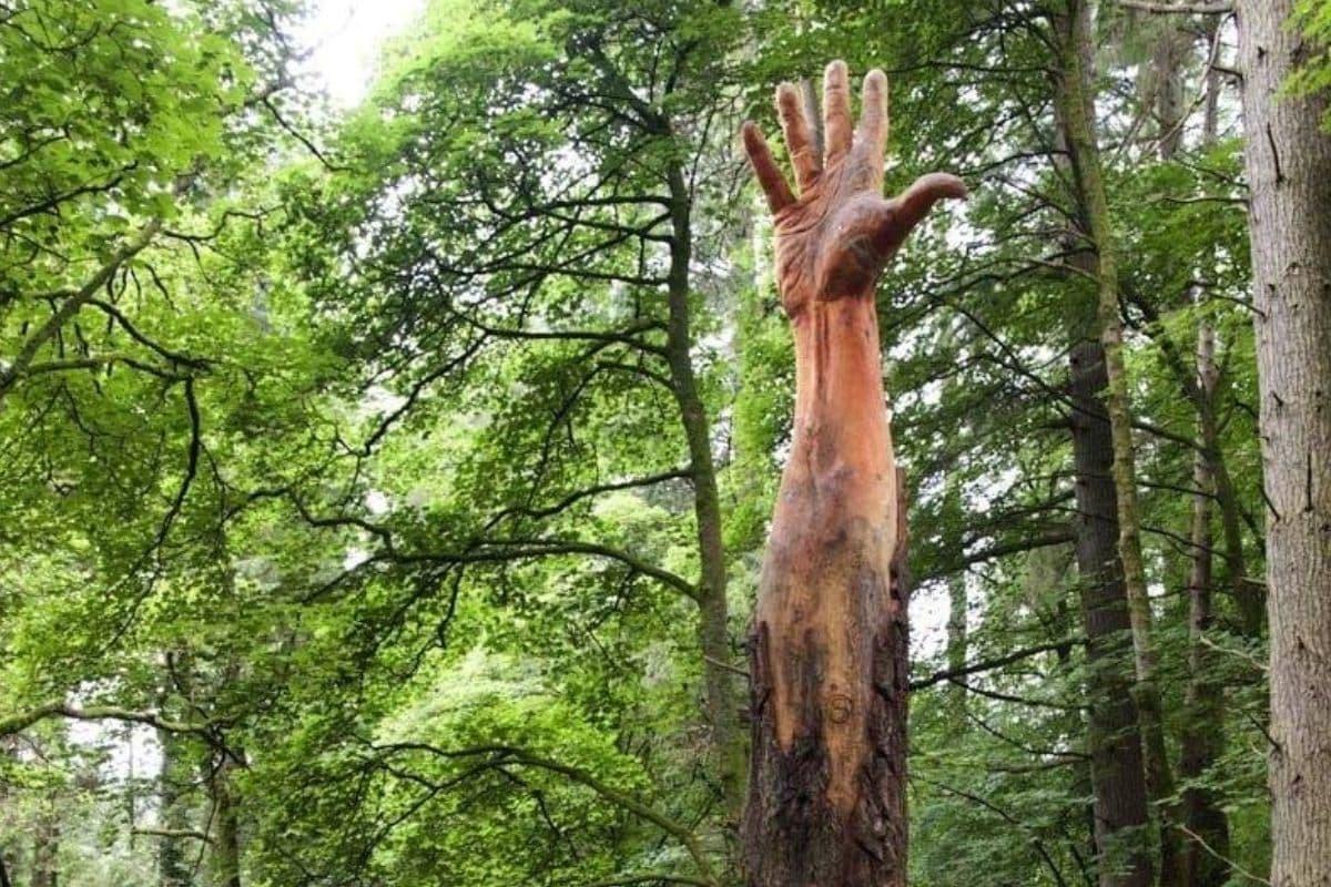 hand tree 1
