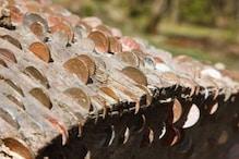 ब्रिटेन का एक पैसों वाला पेड़, जो करता है सबकी मनोकामना पूरी