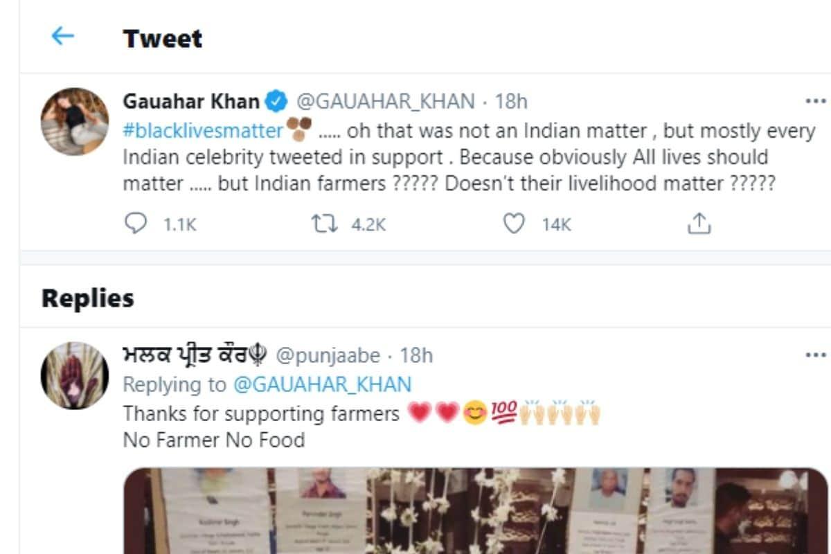 Gauahar Khan, Gauahar Khan tweet, social media, viral tweet, Farmer Protest, Gauahar Khan targeted Bollywood celebs, News 18, Network 18, गौहर खान, गौहर खान ट्वीट, सोशल मीडिया, वायरल ट्वीट, किसान आंदोलन,  गौहर खान ने साधा बॉलीवुड सेलेब्स पर निशाना, न्यूज 18, नेटवर्क 18