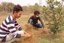 बंजर जमीन पर फल रहे कश्मीरी सेब, इंजीनियरिंग के छात्र की मेहनत लाई रंग