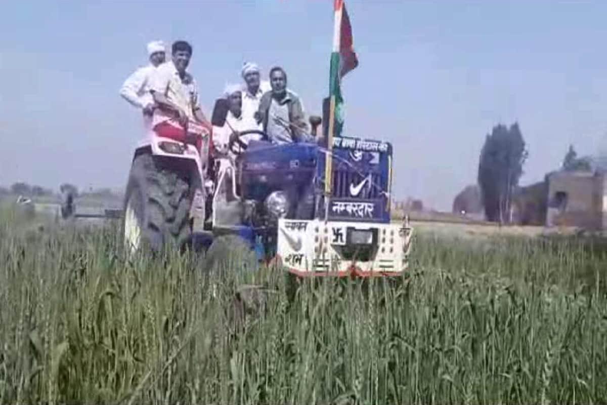 सोनीपत. केंद्र सरकार द्वारा पारित 3 कृषि कानूनों के खिलाफ लगातार किसान आंदोलन पर हैं. किसान अलग-अलग तरीके से सरकार के प्रति अपना आंदोलन चला रहे हैं और तीनों कृषि कानूनों को रद्द करने की मांग कर रहे हैं. लेकिन जब से किसान नेता राकेश टिकैत ने किसानों को फसल जलाने का बयान दिया है तब से किसान फसल बर्बाद करने पर तुले हैं.