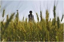 स्टैंडिंग कमेटी में सभी दलों ने कहा- एक कृषि कानून तो अक्षरश: लागू करे सरकार