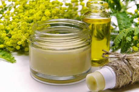 Massage your baby's head and body with this oil, you will get the benefit- Image / Pixabay