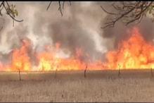 मध्य प्रदेश में आग से 700 किसानों की खड़ी फसल मिनटों में खाक