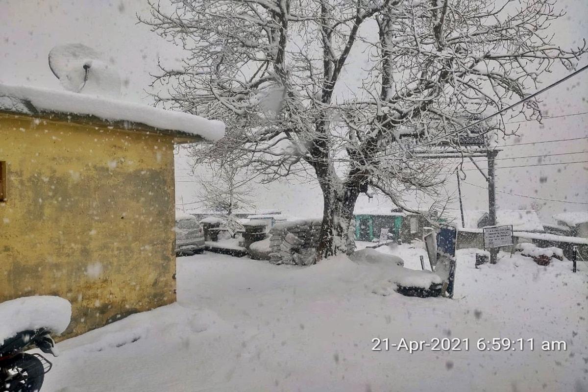 शिमला. सूखे जैसे हालात से जूझ रहे हिमाचल प्रदेश पर मौसम मेहरबान हुआ है. प्रदेश में बीते 12 घंटे से रुक-रुक कर बारिश और बर्फबारी हो रही है.