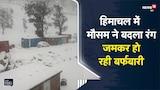 Himachal में मौसम ने ली करवट, जमकर हो रही बारिश और बर्फबारी | Viral Video