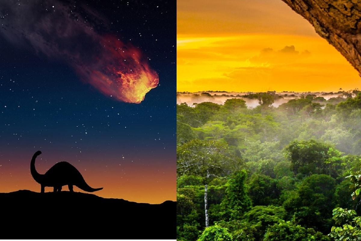 पृथ्वी (Earth) से डायनासोर (Dinosaurs) का खात्मा 6.6 करोड़ साल पहले क्षुद्रग्रह या उल्कापिंड (Meteorites) के टकराव से आए महाविनाश की वजह से हुआ था. इस टकराव के पारिस्थितिकी तंत्र पर हुए प्रभाव को हमेशा ही नजरअंदाज किया गया है. नए अध्ययन से खुलासा हुआ है कि इस टकराव की वजह से ही दक्षिण अमेरिका (South America) महाद्वीप में अमेजन के वर्षा वन (Amazon Rain forest) पैदा हुए थे. (प्रतीकात्मक तस्वीर: Pixabay/shutterstock)