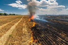 पराली संकट: अपने ही खेतों को जलाने की मूर्खता