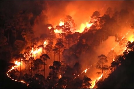 Uttarakhand's forests explode, fire started due to rural population, watch video