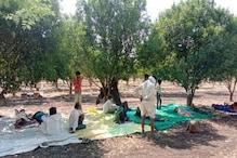 PHOTOS : हे भगवान! झोलाछाप डॉक्टरों ने खेत में भर्ती कर लिए मरीज, पेड़ों के सहारे चढ़ा दी स्लाइन