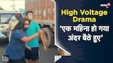 High Voltage Drama | ताजी हवा खाने निकलीं मैडम को रोका तो बोला- 'एक महिना हो गया अंदर बैठे हुए'