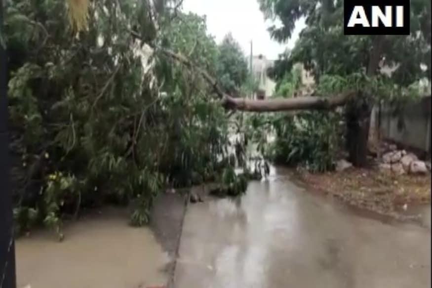 नई दिल्ली. साल के पहले चक्रवाती तूफान कहे जा रहे टाउते (Tauktae) गुजरात, मुंबई और गोवा समेत कई राज्यों में अपना असर दिखा चुका है. राज्यों में तूफान की वजह जमकर तबाही देखी गई. कहीं, सड़क किनारे लगे विशालकाय पेड़ धराशाई हुए, तो कहीं लोगों ने दिनभर अंधेरे में गुजारा. फिलहाल तूफान गुजरात (Gujarat) के तटीय क्षेत्रों में है. बीती रात सौराष्ट्र के इलाकों में लैंडफॉल का प्रक्रिया हुई. (फोटो: ANI/Twitter)
