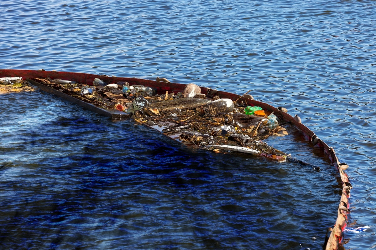 Environment, Climate Change, Human life, Livelihood, Ocean, World Ocean Day, World Ocean day, Water Pollution, Ocean Pollution,