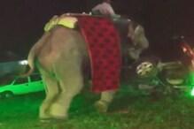 प्रयागराज: बारात में हाथी हुआ बेकाबू, मचाया जमकर उत्पात, देखिए VIDEO