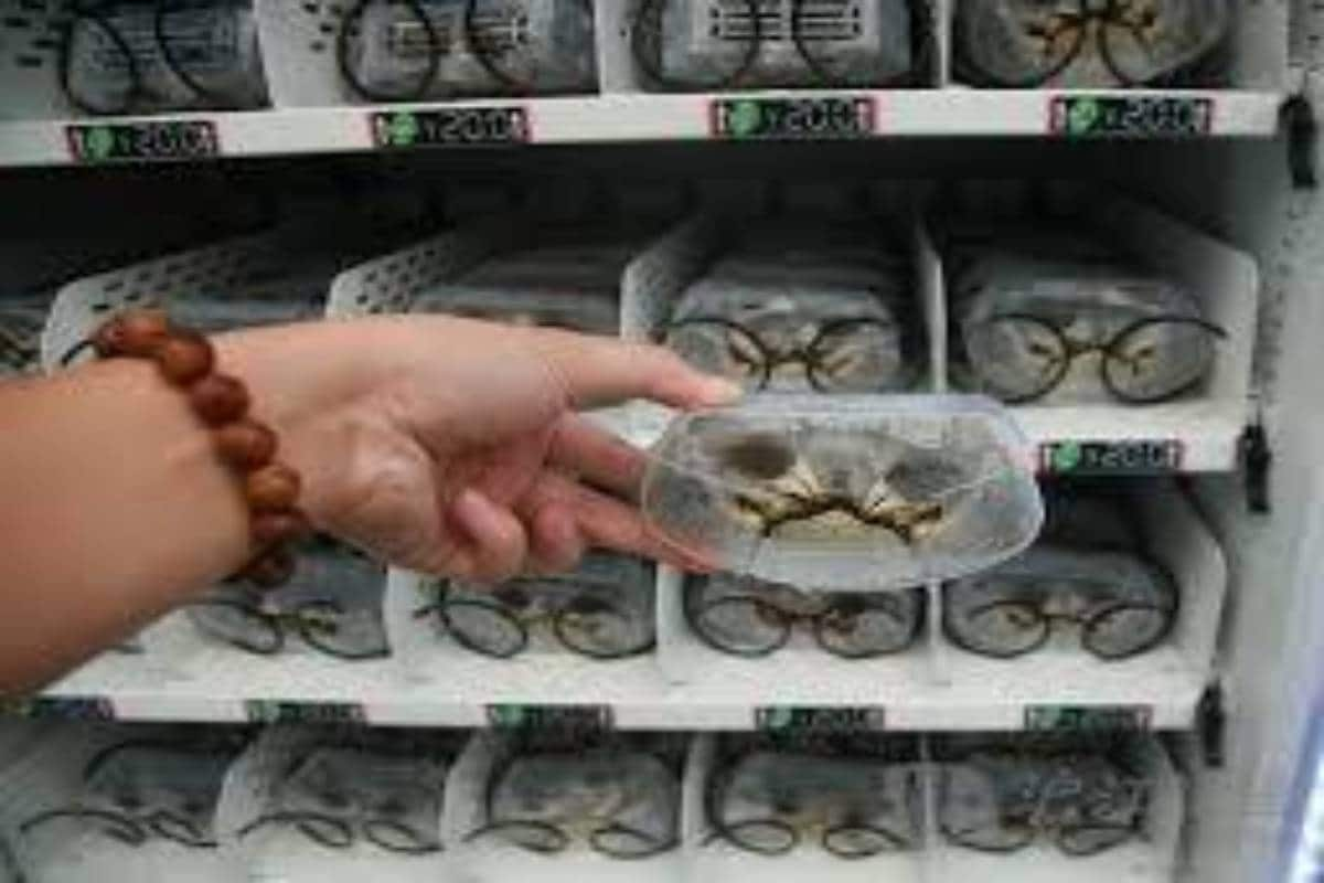 interesting facts,interesting facts about china, china news, vending machines for live crab, crocodiles and sharks sold in malls, Crabs Vending Machine