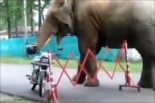 सड़क किनारे बाइक पर टंगे हेलमेट को उतारने लगा हाथी, Video देखें फिर क्या हुआ