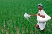 राजस्थान: किसानों को मिलेगी बड़ी राहत, अब नहीं रहेगी डीएपी की कमी