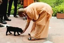 CM योगी के घर आया नया सदस्य, कौन है ये नया मेंबर? जिसे वह करते हैं प्यार