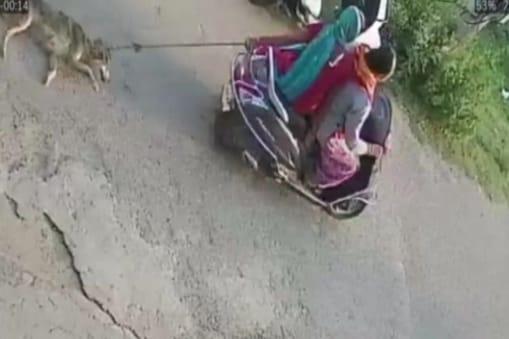 घटना सीसीटीवी कैमरे में कैद हो गई थी, जिसका वीडियो सोशल मीडिया पर वायरल हो गया था.
