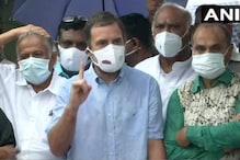 राहुल गांधी ने कहा- महिला सांसदों के साथ हुई धक्कामुक्की 'लोकतंत्र की हत्या'