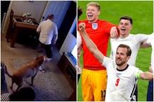 Euro 2020: मालिक के साथ डॉगी भी इंग्लैंड की जीत पर खुशी से झूमा, देखें वीडियो