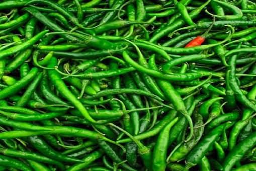 हरी मिर्च में आयरन अधिक मात्रा में पाया जाता है.