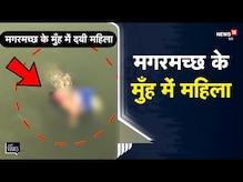 UP   बाढ़ की त्रासदी के बीच Crocodile के मुँह में नजर आई महिला, दहशत में लोग   Viral Video