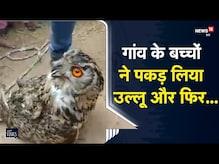 OMG   गांव के बच्चों ने पकड़ लिया 7 किलो का उल्लू, ग्रामीणों ने खूंटे से बांधा   Viral Video