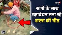 Shocking Video   सांपों के साथ रक्षाबंधन मना रहा था Snake Catcher, चली गई जान   Chhapra   ViralVideo