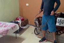 OMG: किंग कोबरा के साथ परिवार ने बिताई रात, सुबह आंख खुली तो उड़े होश