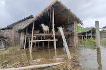 साहिबगंज में उफनाई गंगा, सदर प्रखंड के कई गावों में घुसा पानी