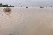 बाढ़ में ताश के पत्तों की तरह बह गए शिवराज सरकार के दौरान बनाए गए पुल