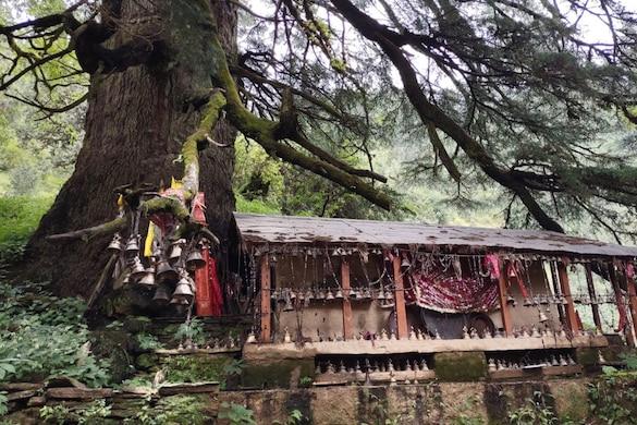 लाटू देवता का मंदिर वाण गांव में स्थितहै.