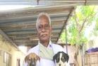 बीमार आवारा कुत्तों के लिए इस शख्स ने खोला अनोखा आश्रम, 5 साल से कर रहे सेवा
